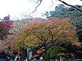 2 Minookōen, Minoo-shi, Ōsaka-fu 562-0002, Japan - panoramio (7).jpg