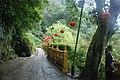 353, Taiwan, 苗栗縣南庄鄉獅山村 - panoramio (5).jpg