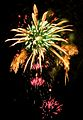4th of July Fireworks - Ala Moana Beach Park (4779025611).jpg