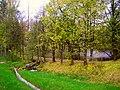 5868. Sertolovsky brook and pond.jpg