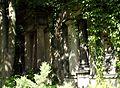 61viki Cmentarz żydowski na Ślężnej. Foto Barbara Maliszewska.jpg