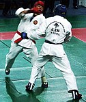 ARB (martial art).jpg