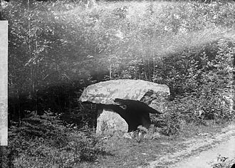 Llanboidy - A nearby cromlech, photographed by John Thomas in about 1885