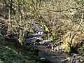 A little stream we walked past - panoramio.jpg