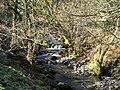 A little stream we walked past - panoramio.jpg