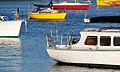 Abaconda boat tauranga qfse.jpg