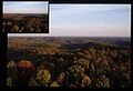 Aerial View Of Treetops In Fall Colors (Missouri State Archives) (8203211499).jpg