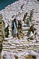 Afghanistan Stacking USAID-Donated Wheat 2002.jpg
