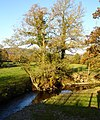 Afon Cain south of Llanfechain - geograph.org.uk - 601546.jpg