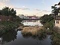 Aiharaike Pond in Itoshima, Fukuoka.jpg