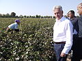 Alan Duncan visits UK supported cotton producers in Tajikistan.jpg