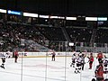 Albany Devils vs. Portland Pirates - December 28, 2013 (11622068605).jpg