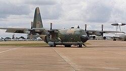القوات الجوية الجزائرية 250px-AlgerianHercul