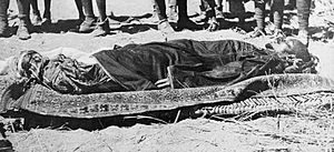 Ali Dinar - Ali Dinar after his death in battle in 1916