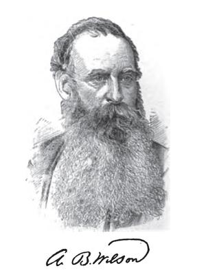 Allen B. Wilson - Allen Benjamin Wilson