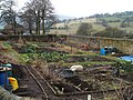 Allotments, Hathersage - geograph.org.uk - 1166499.jpg