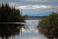 Along the Tanana River.jpg