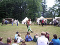 Altstadtfest 2009 11.JPG