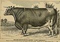 American farming and stock raising, with useful facts for the household, devoted to farming in all its departments (1892) (14595561060).jpg