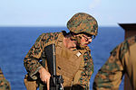 Amphibious Integration Training 140905-M-CX588-029.jpg