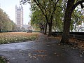 An autumn morning in Victoria Tower Gardens - geograph.org.uk - 2158993.jpg