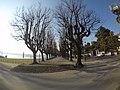 Angera - Lungo Lago - panoramio.jpg