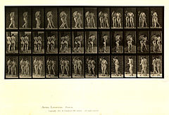 Animal locomotion. Plate 54 (Boston Public Library).jpg