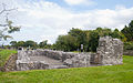Annaghdown Nunnery Church 2010 09 12.jpg