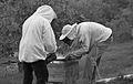 Apiculteurs - Installant du sirop sur un nourisseur - 3.jpg
