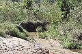 Araguainha - State of Mato Grosso, Brazil - panoramio (1055).jpg