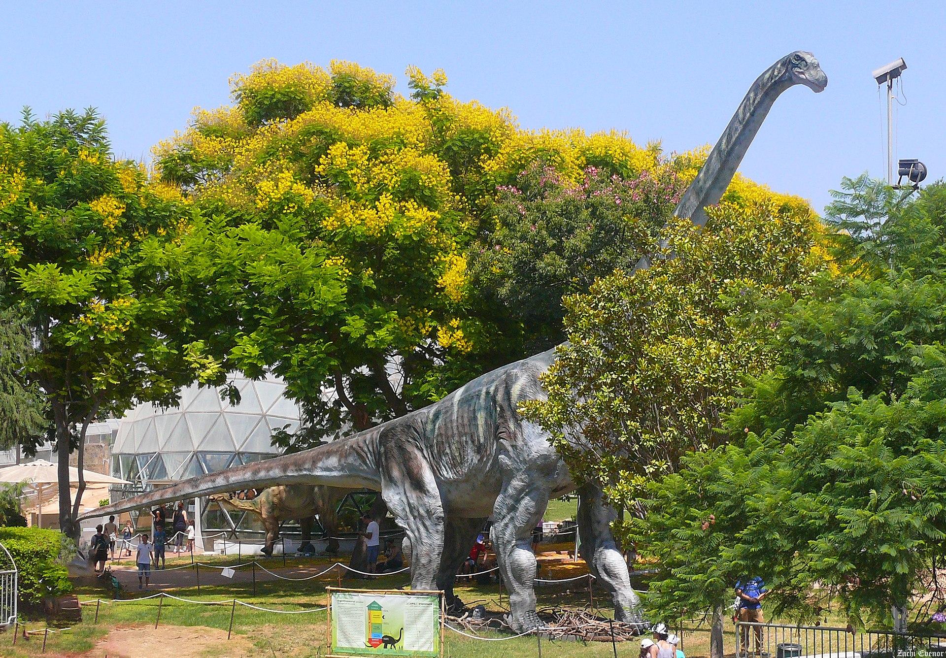 Argentinosaurus-at-WIS.jpg