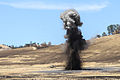 Army Reserve engineers practice demolition at WAREX 140724-A-RI069-411.jpg