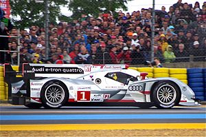 2012 FIA World Endurance Championship - Audi won five of the eight championship races with their R18s