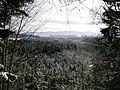 Ausblick an der Isar - panoramio.jpg