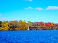 Autumn Colors at Lake Wisconsin - panoramio.jpg
