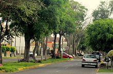 Avenida Manuel Vera Enriquez