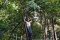 Aventura Park Comana (AP4H6736) (10450258436).jpg