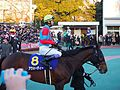 Awardee and Yutaka Take in Tokyo Daishoten at Oi racecourse (31952386066).jpg