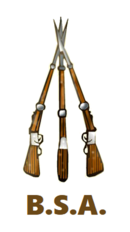 BSA piled rifles.png