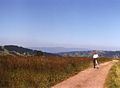 Bachledzki Wierch, widok na Gorce, lipiec 1995.jpg