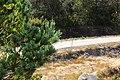 Baltar, Province of Ourense, Spain - panoramio (33).jpg