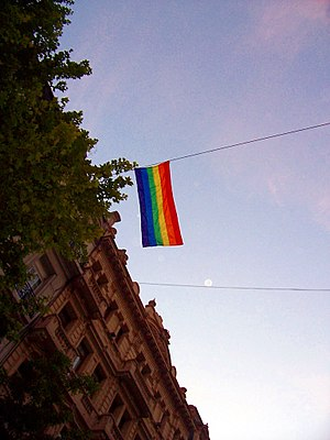 Bandera Gay en la Marcha del Orgullo LGBT 2008...