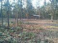 Bangabandhu Sheikh Mujib Safari Park (35).jpg