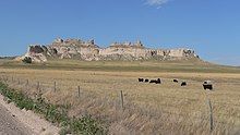 Cliffs and pinnacles in distance; grassland with cattle in foreground