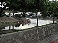 Barcaça passando pela ponte Júlio de Mesquita Neto no poluído (infelizmente) Rio Tietê em São Paulo. A ponte interliga a Rua José Papaterra Limonge, no bairro do Limão à Avenida Nicolas Böer - panoramio.jpg