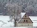 Barn - Flickr - Stiller Beobachter (1).jpg