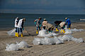 Beach Clean up during DWH (8743615375).jpg