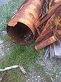 Beach Treasure on Haida Gwaii (27481974051).jpg