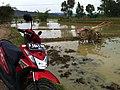 Bekasi, West Java, Indonesia - panoramio (9).jpg