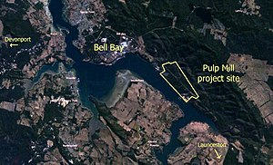Bell Bay Pulp Mill - Proposed project site